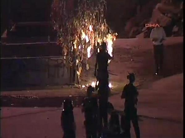 Η αστυνομία βάζει φωτιά σε ένα δέντρο στο Gezi